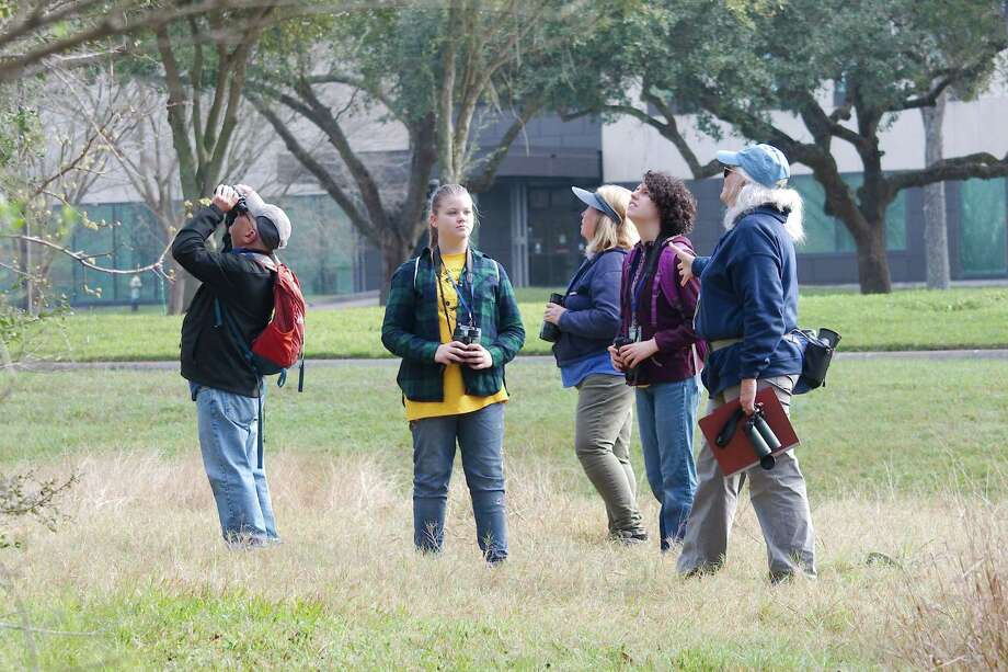 """The Bay Area is a prime area for bird watching. Girls here search for birds during a """"Becoming an Outdoors Girl"""" event at the University of Houston-Clear Lake, which is near birding sites such as Harris County's Bay Area Park, 7500 Bay Area Blvd., which is by Armand Bayou. Photo: Kirk Sides / Staff Photographer / © 2020 Kirk Sides / Houston Chronicle"""