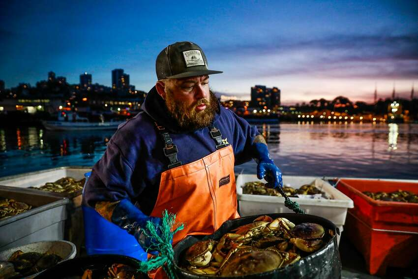 Fisherman Jake Wilson caries a bucket of Dungeness crab as he hauls it ashore at Fisherman's Wharf on Pier 45 in San Francisco in December.