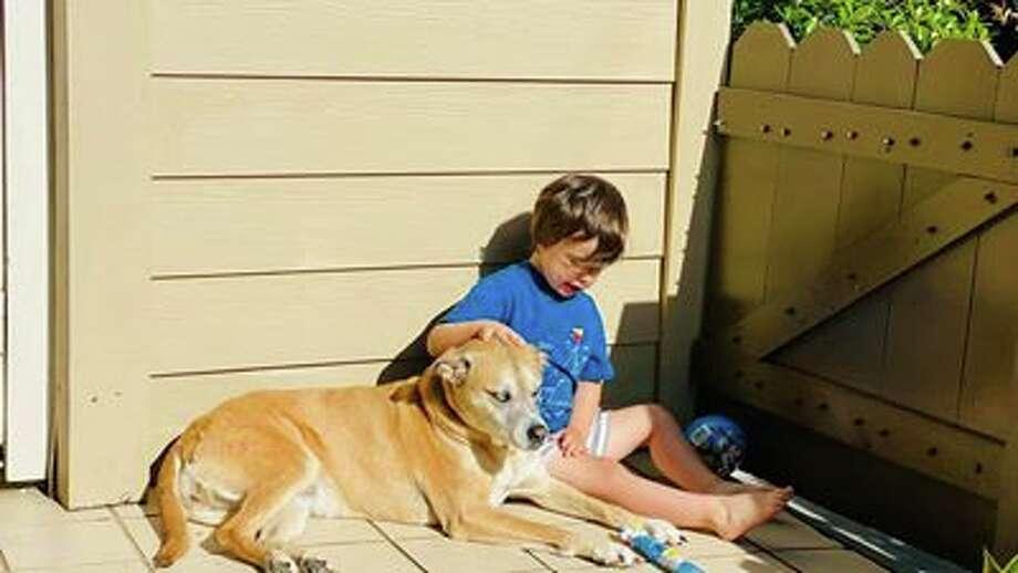 """Just a boy and his dog, enjoying quarantine together."" Photo: Jennifer P./Facebook"