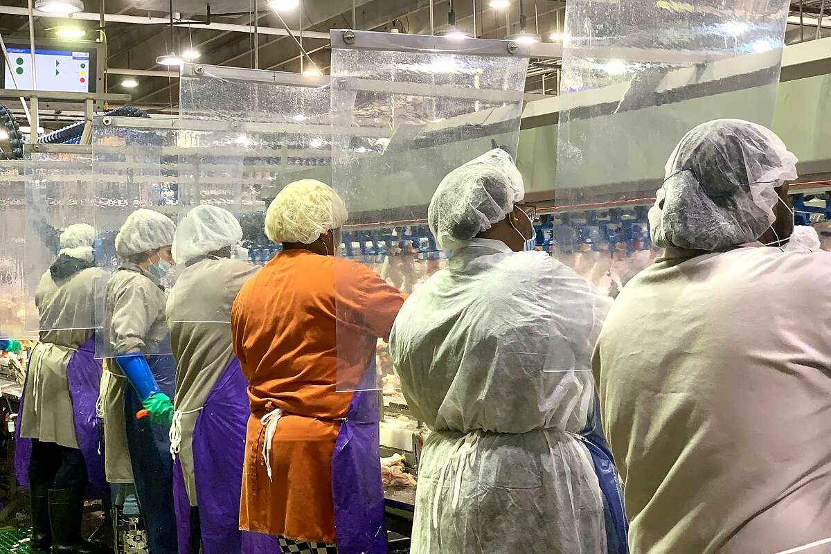 In this April 2020, photo provided by Tyson Foods, workers wear protective masks and stand between plastic dividers at the company's Camilla, Georgia poultry processing plant. Tyson has added the plastic dividers to create separation between workers because of the coronavirus outbreak.