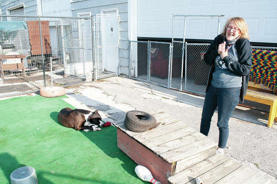 """Becky Lashmett, president and volunteer at Scott County Dog Rescue, plays with Spudz on Friday morning. Spudz, a 9-year-old mix, also answers to the nickname """"The King."""" Photo: Darren Iozia 