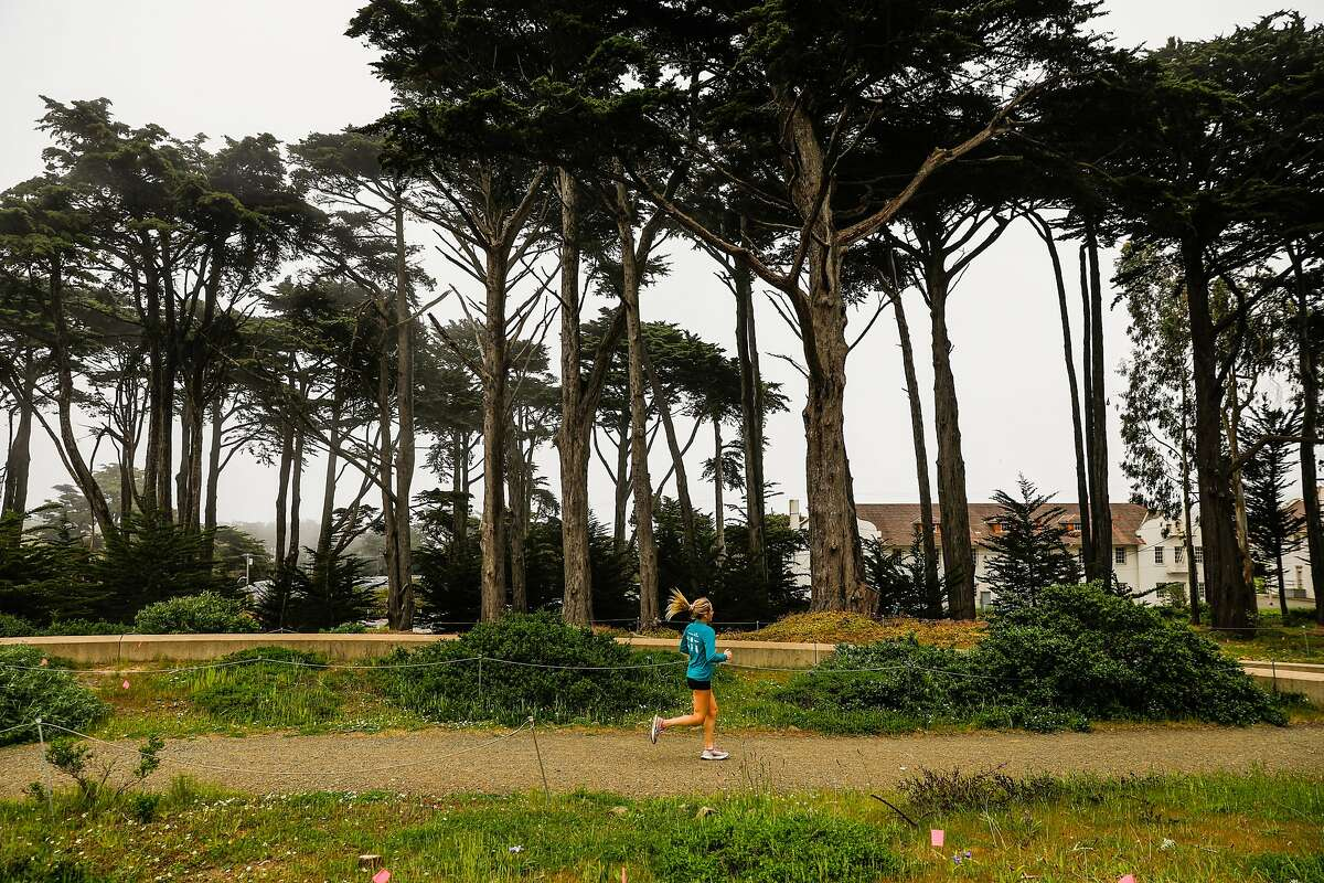 A woman runs on a trail near the Golden Gate overlook in the Presidio in San Francisco, California on Sunday, April 26, 2020. Public health officials had feared spring-like weather over the weekend would cause a rush of people to set aside shelter in place mandates and descend upon public parks and beaches, putting themselves at risk to coronavirus exposure.