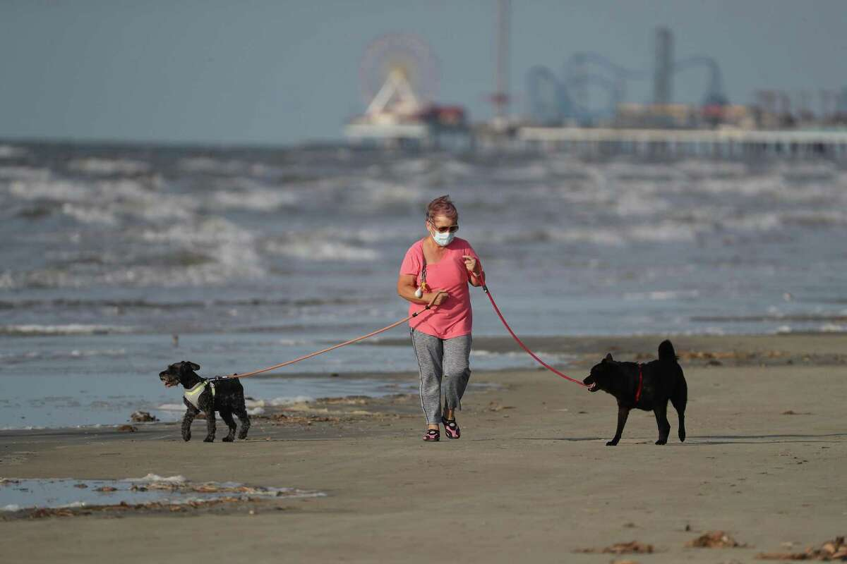 A Galveston resident wears a mask as she walks her dogs after the city of Galveston partially reopen public beaches after closing them for nearly a month due to the novel coronavirus outbreak Monday, April 27, 2020, in Galveston.
