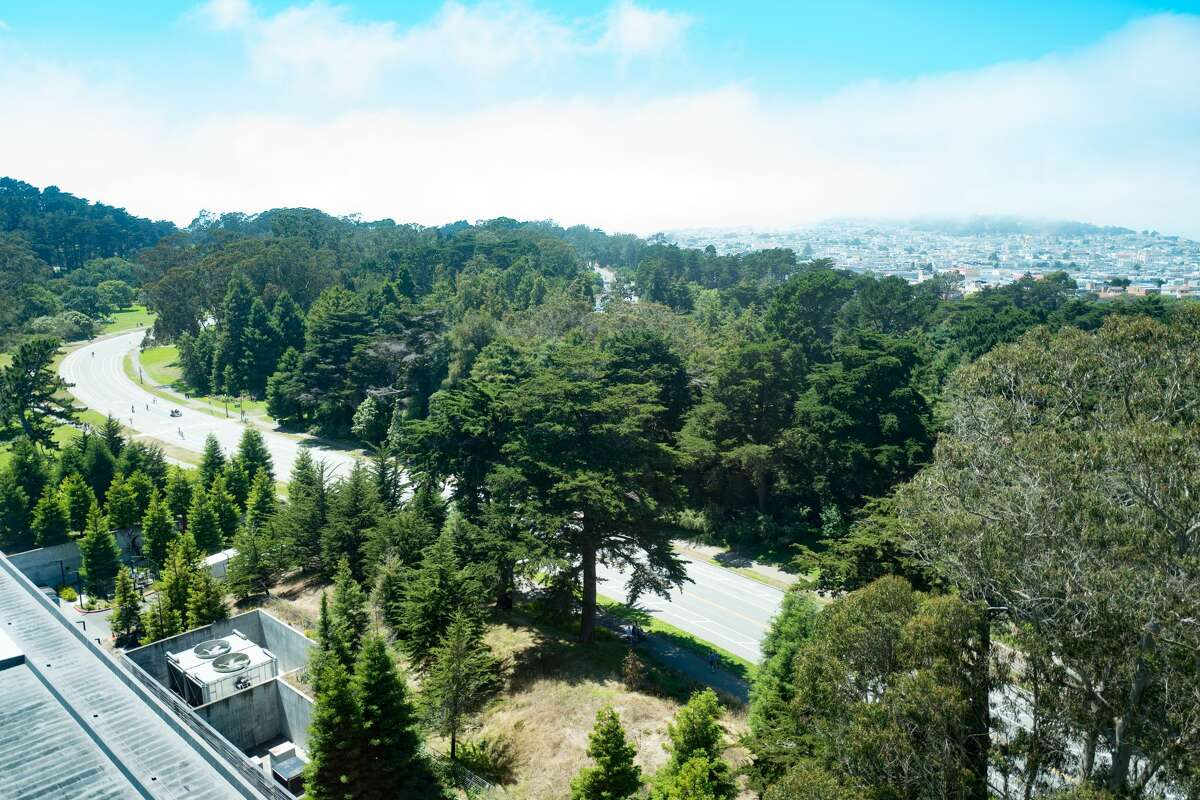 Aerial view of John F Kennedy Drive, Golden Gate Park and the Sea Cliff neighborhood of San Francisco, California, July, 2016. (Photo by Smith Collection/Gado/Getty Images).