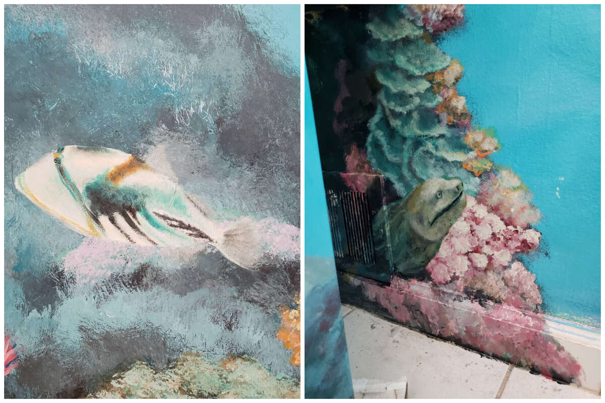 Above: The moray the merrier - a triggerfish (left) and an eel make an appearance. Wong's canvasses are on the walls of buildings, restaurants and private homes, both inside and out. His best-known public murals cover two walls of the Pacifica Community Center. One commemorates the discovery of the San Francisco Bay by the Spanish explorer Gaspar de Portolà, and the other is dedicated to the Ohlone tribes that once lived in Pacifica.