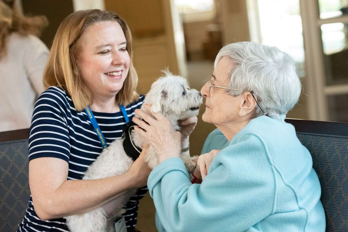 Elizabeth Bailey, a volunteer pet therapist from Old Greenwich and her dog, Bear, share a moment of fun with Elvie McGuire, who is recovering from the coronavirus, at the Nathaniel Witherell Home. The photo was taken months ago.