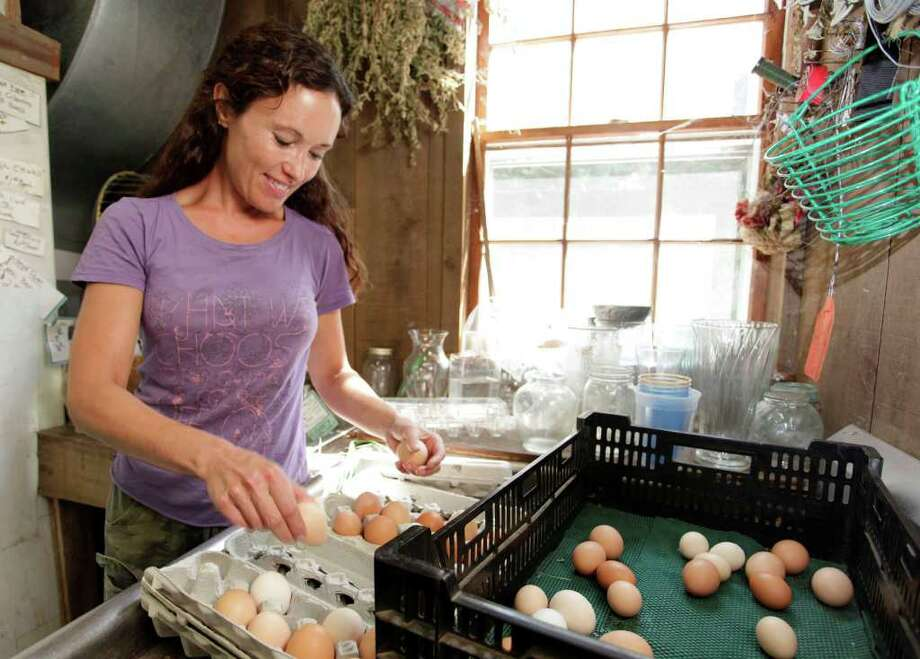 Barbara Campbell, master gardener of Holbrook Farms, boxes farm eggs in Bethel August 20, 2010. Photo: Chris Ware / The News-Times