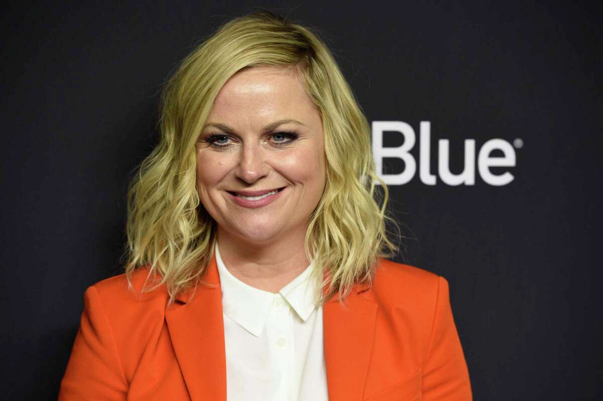 Amy Poehler starred in