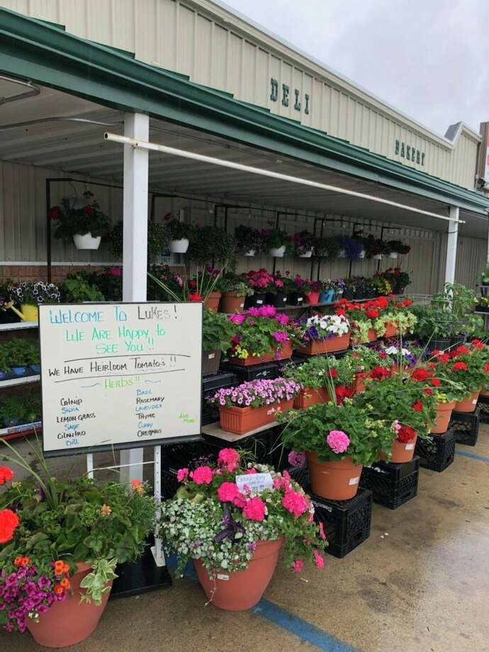 Luke's Super Market greenhouse is open throughout the month of May. (Julie Epperson/Courtesy)
