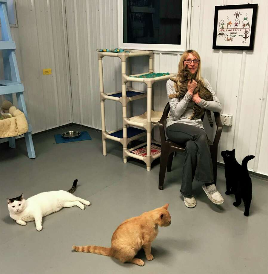 ARC volunteer Stephanie Grabiel holds Jellyorum as she plays with the felines in the cat room at the shelter. (Courtesy photo)
