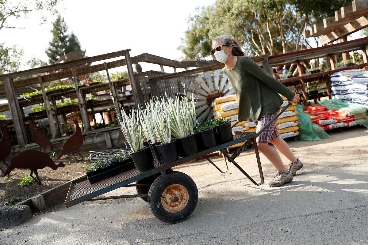 Co-owner Fionuala Campion moves a cart of inventory at Cottage Gardens of Petaluma in Petaluma, Calif., on Thursday, April 30, 2020.