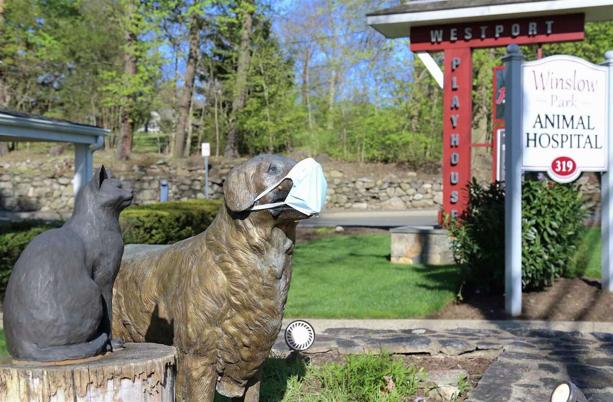 A sign of safety indicatng masks for persons and dogs alike --- though of course not for cats --- as demonstrated in front of the Winslow Park Animal Hospital on Sunday, May 3, 2020, in Westport, Conn.