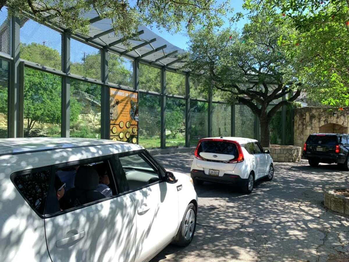 The San Antonio Zoo's drive-thru experience The San Antonio Zoo made a splash on March 29 when a social distancing-approved drive-thru experience was unveiled. Eventually, the idea to raise funds for the hard-hit zoo landed on news desks at CNN, USA Today and
