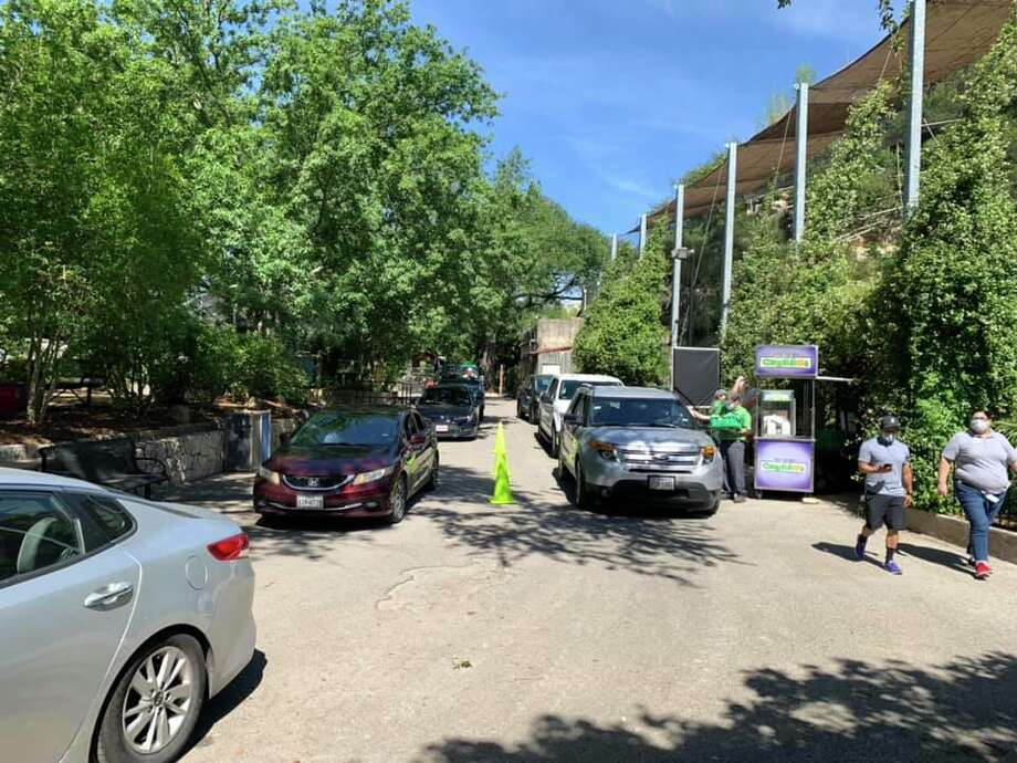 San Antonio Zoo President and CEO Tim Morrow shared photos of the inaugural, sold-out weekend of the drive-thru experience which allowed visitors to see the animals from the safety of their vehicles. Photo: Courtesy, Tim Morrow, San Antonio Zoo