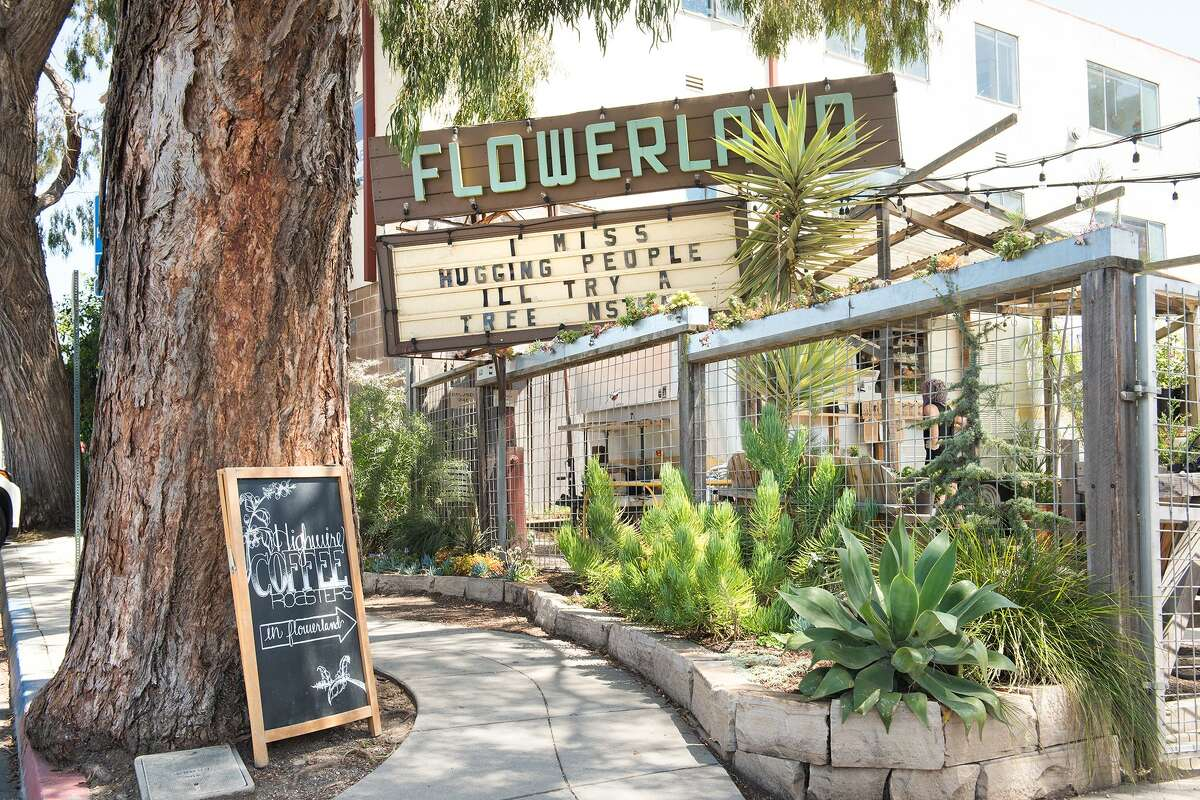 Flowerland Nursery at 1330 Solano Ave. in Albany is currently functioning by curbside pickup and appointment only. Now, bored Bay Area residents are rising to the occasion, with an abundance of time on their hands and nowhere to go but their own homes. Beginners and seasoned gardeners alike have been flocking to anywhere that sells an herb or vegetable plant.