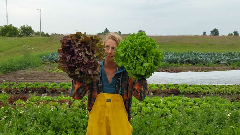 Katie Lietz holds up two bunches of different lettuce varieties at Little Red Organics in Free Soil. Photo: Little Red Organics Courtesy Photo