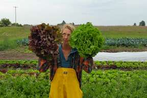 Katie Lietz holds up two bunches of different lettuce varieties at Little Red Organics in Free Soil.