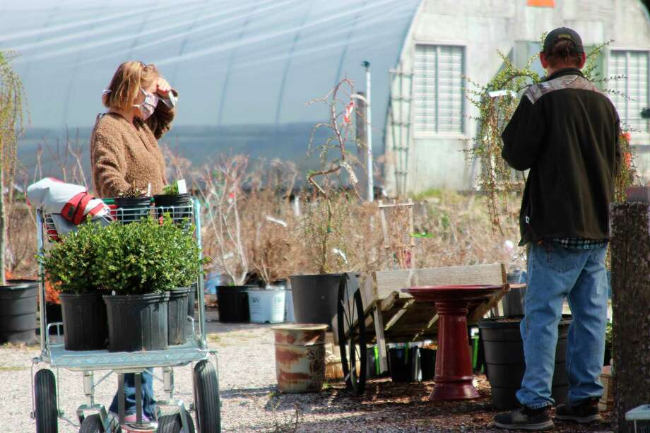 A Crystal Gardens employee helps a shopper look for plants. (Photo/Colin Merry)