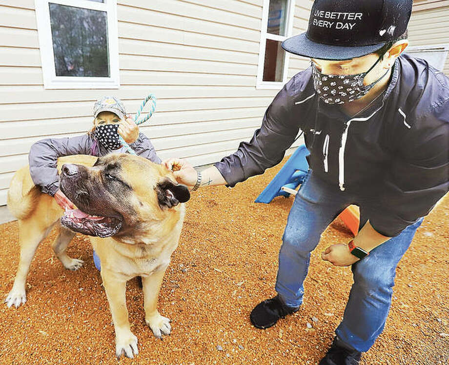Bonnie Bradley, left, and Justin Wendle, right, employees of Club Paws Inc. on Elm Street in Alton, play with a mastiff outside of the business Tuesday. Within three days of announcing it was reopening under the revised stay-at-home rules, the pet grooming service was booked for the rest of May.