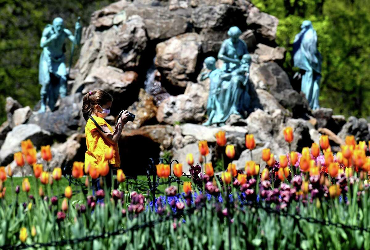 Amelia Desforge, 7, of Troy captures the beauty of Washington Park tulips, as she photographs the dazzling flowerbeds on Friday, May, 8, 2020, in Albany, N.Y. (Will Waldron/Times Union)