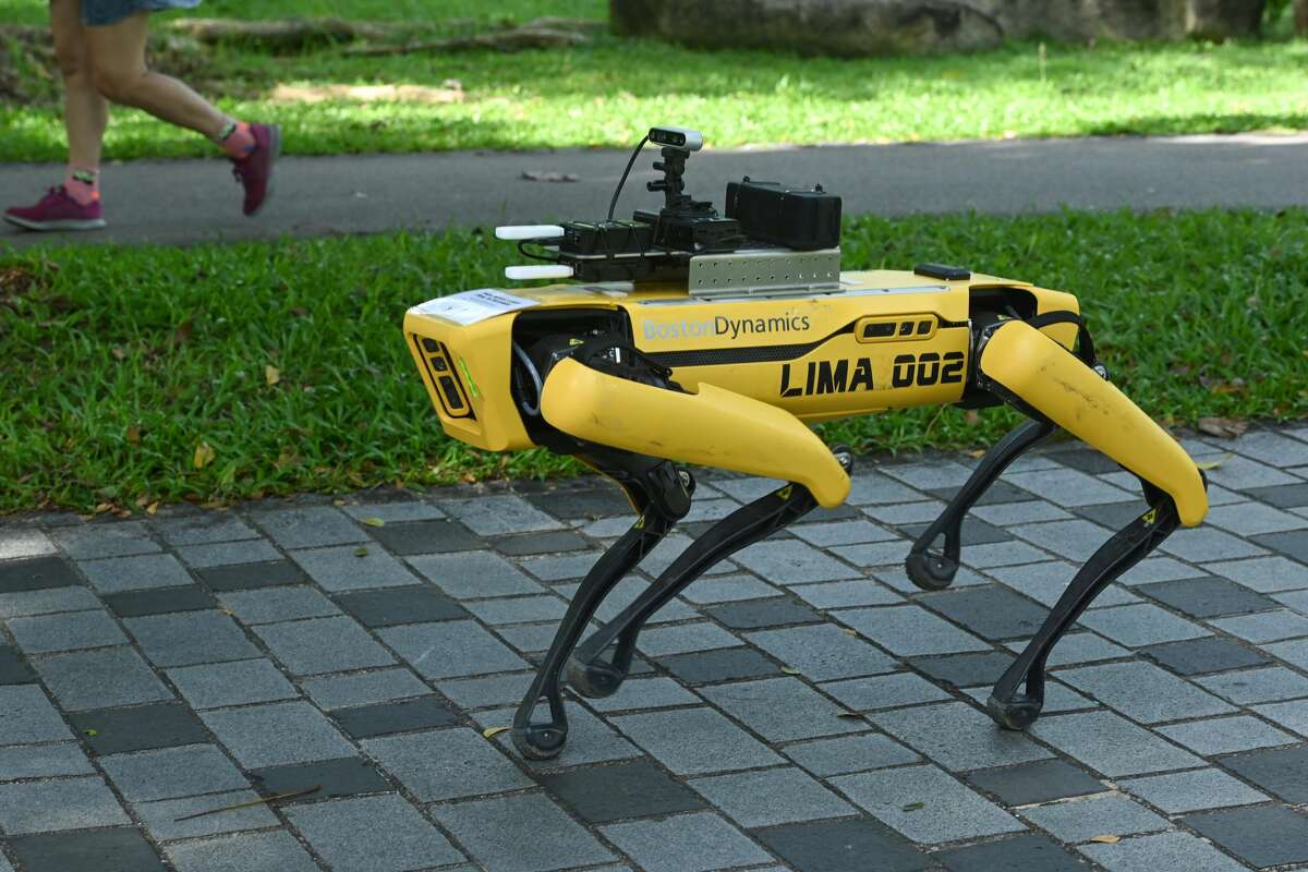 A four-legged robot called Spot, which broadcasts a recorded message reminding people to observe safe distancing as a preventive measure against the spread of the COVID-19 novel coronavirus, is seen during its two-week trial at the Bishan-Ang Moh Kio Park in Singapore on May 8, 2020.