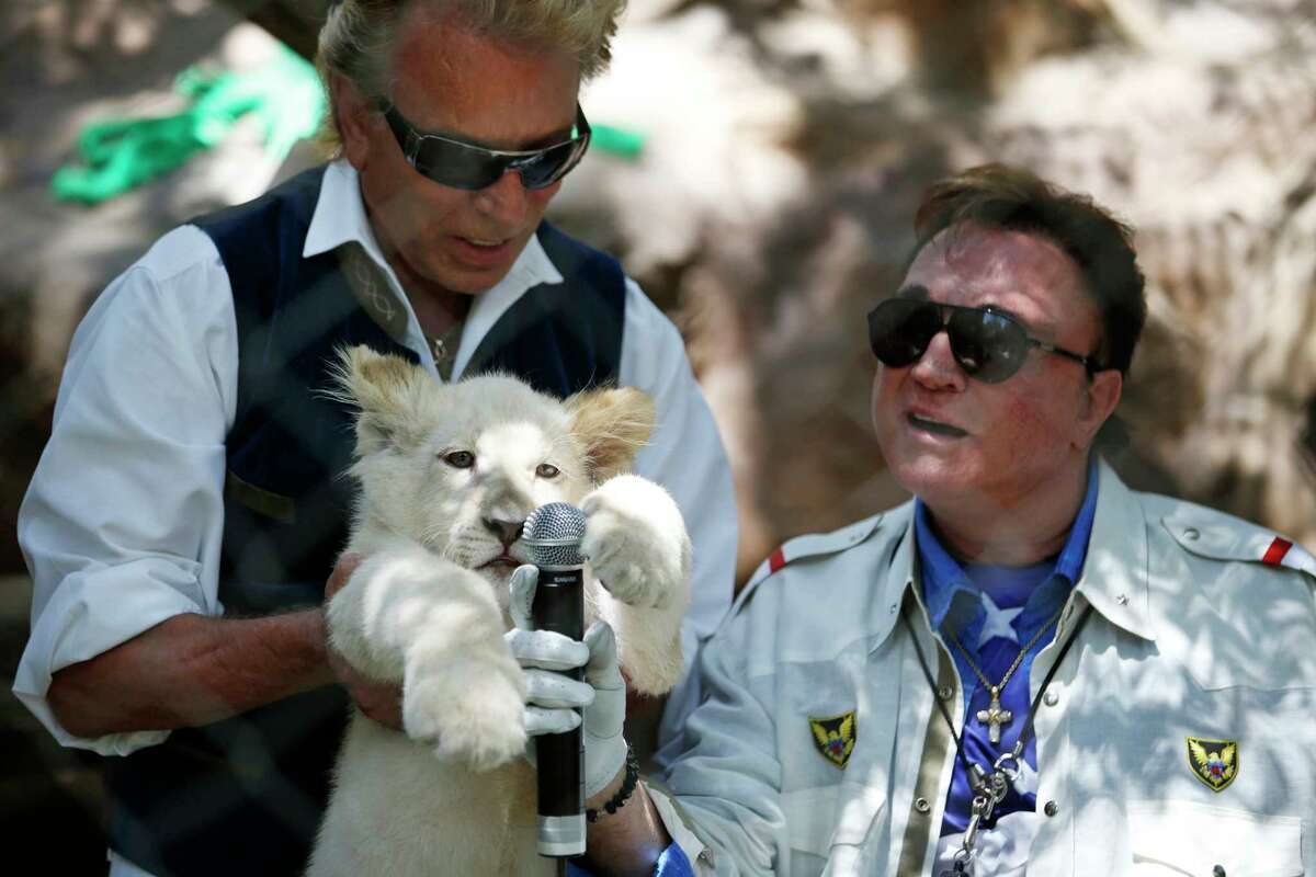 FILE - In this Thursday, July 17, 2014, file photo, Siegfried Fischbacher, left, holds up a white lion cub as Roy Horn holds up a microphone during an event to welcome three white lion cubs to Siegfried & Roy's Secret Garden and Dolphin Habitat, in Las Vegas. Horn, one half of the longtime Las Vegas illusionist duo Siegfried & Roy, died of complications from the coronavirus, Friday, May 8, 2020. He was 75. (AP Photo/John Locher, File)