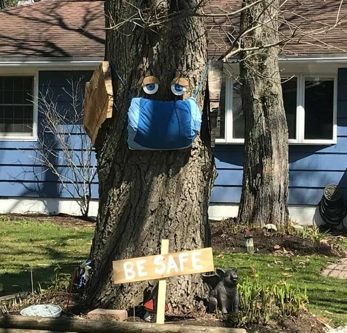"""A house on Julie Mansfield's street in Delmar has this tree in their front yard. """"It certainly made me stop, and smile,"""" she said."""