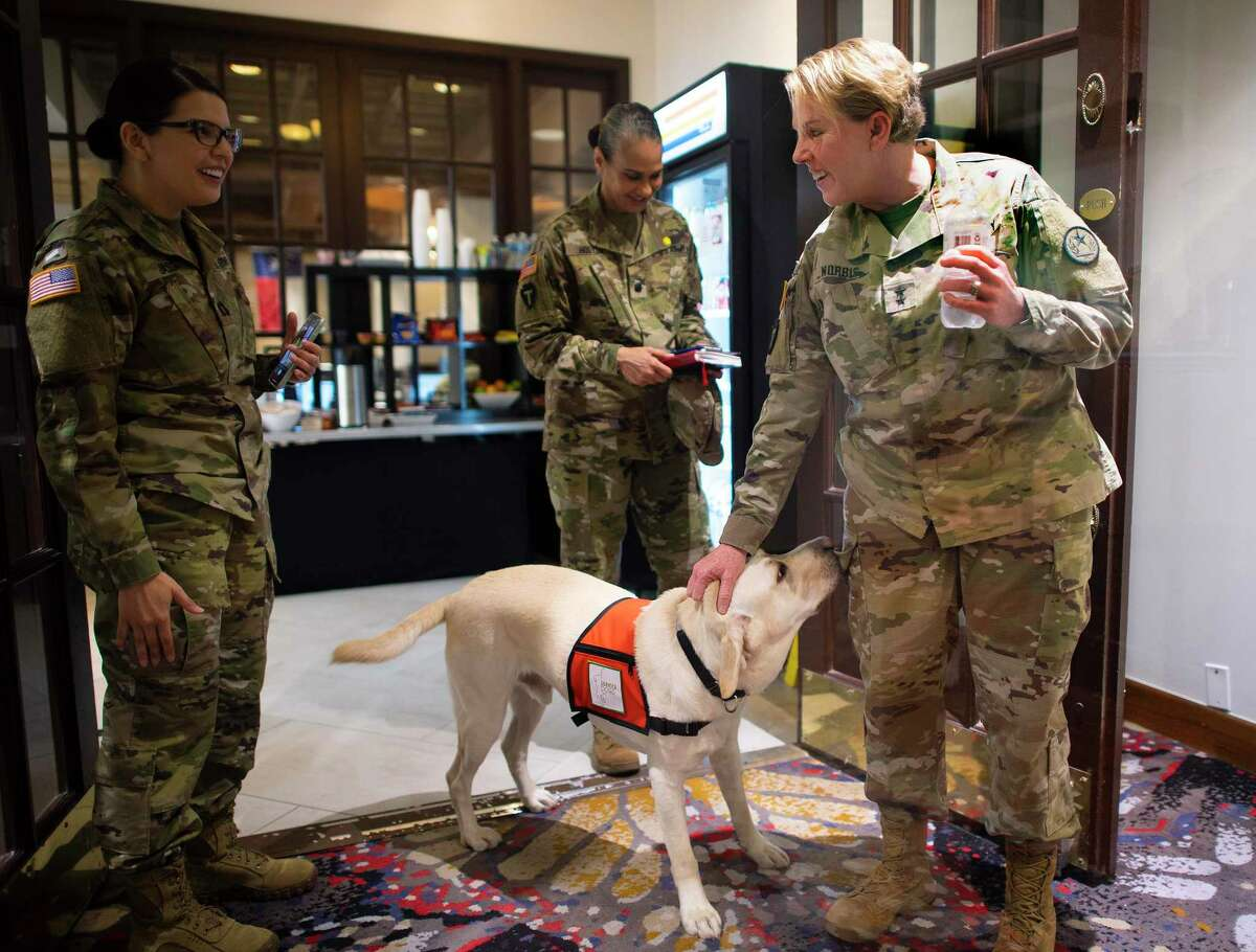 Maj. Gen. Tracy Norris, adjutant general of the Texas National Guard, is greeted by a service dog on Friday at the Mobile Testing Coordination Center in Austin. The guard has soldiers and airmen supporting coronavirus response missions around the state.