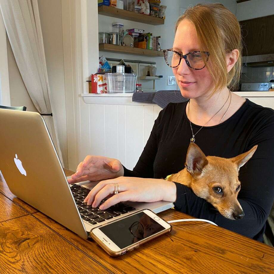 Laura Matthews, a librarian, is pictured working from home with her dog. Photo: Contributed
