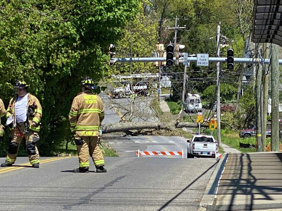 A tree fell Tuesday morning on Hollow Tree Ridge Road knocking down power lines with it. Photo: Kristen Vitti
