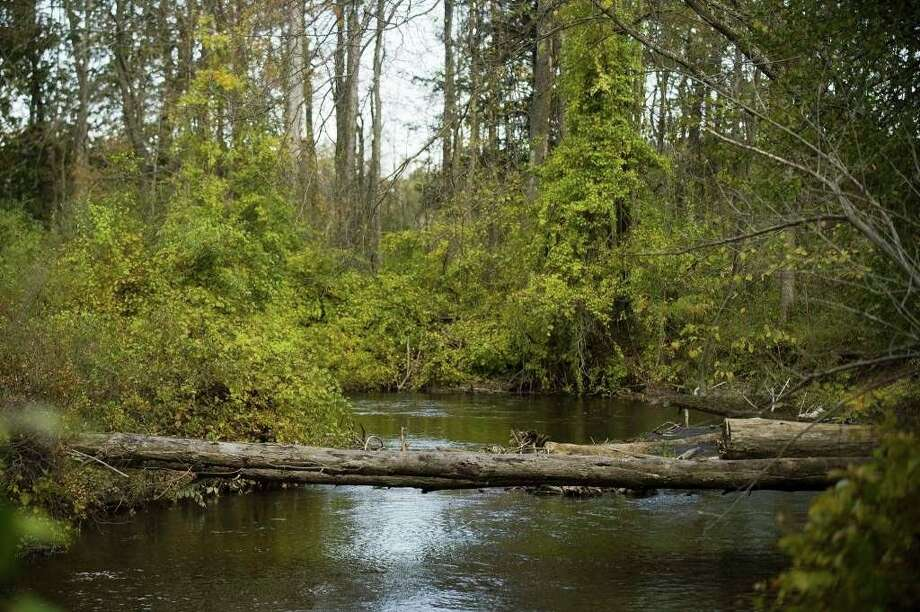Gladwin Conservation District has recently been awarded a grant from the Gladwin County Community Foundation to relocate obstructions along a 10-mile stretch of the Cedar River. (Photo provided)