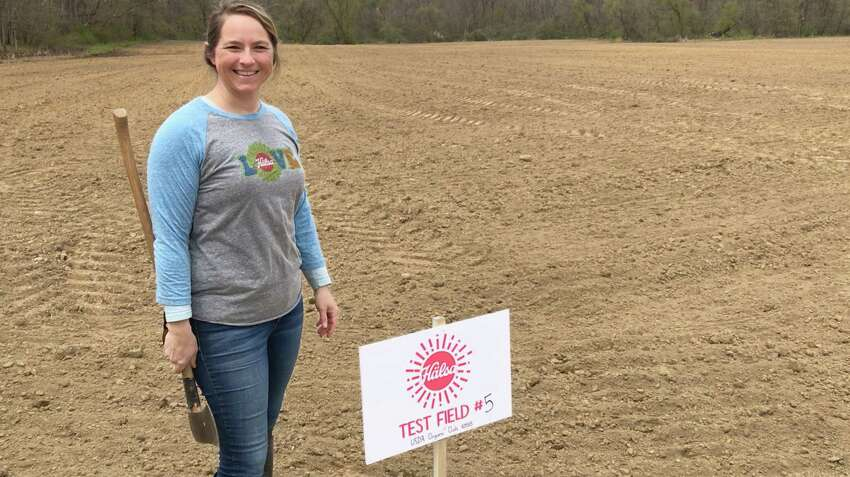 Jamie Ziehm, who runs a dairy farm in Hoosick Falls with her husband, recently planted organic oats to be grown for a company that produces  the only yogurt in the world made with oat milk from whole-grain oats.