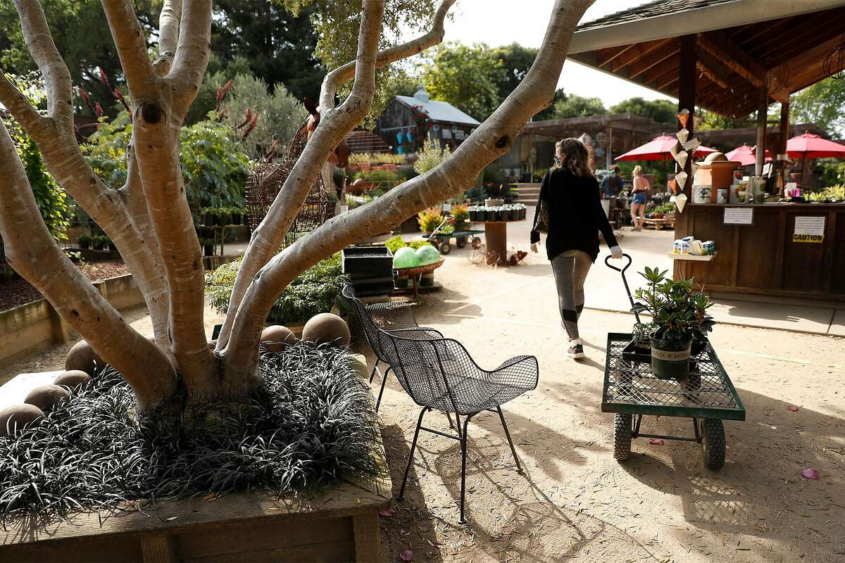 Cottage Gardens of Petaluma is open and operating in Petaluma, Calif., on Thursday, April 30, 2020.
