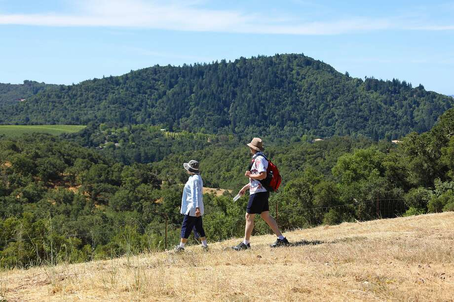 Jordan Winery of Healdsburg has led 4-mile nature hikes for the past few years and will host more as part of its reopening. Photo: Jordan Winery