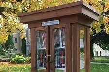 The Bad Axe Rotary's Little Free Library is located on the lawn of the County Building on Huron Avenue near the information kiosk. (Submitted Photo)