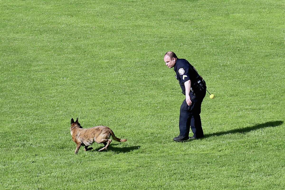 Corporal Kevin Smith of the Westport Police Department gives his dog Onyx, a recruit in training, some serious aerobic work at Greens Farms Elementary School on Saturday, May 16, 2020, in Westport, Conn.