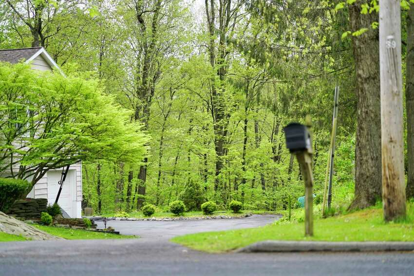 A view of the woods behind homes on Wooddale Dr. on Monday, May 18, 2020, in Clifton Park, N.Y. Some residents are upset over plans to harvest 60 acres of the forest for lumber. (Paul Buckowski/Times Union)