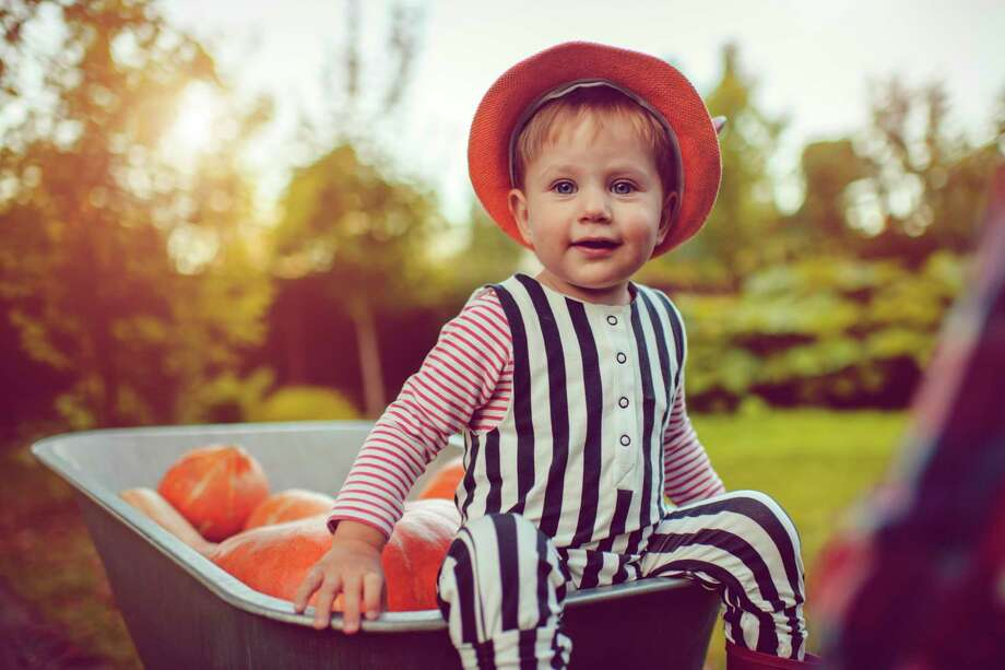 Veggie tales: Even the youngest family members can get their hands dirty and help with home gardening. Photo: Getty Images / Getty Images / This content is subject to copyright.