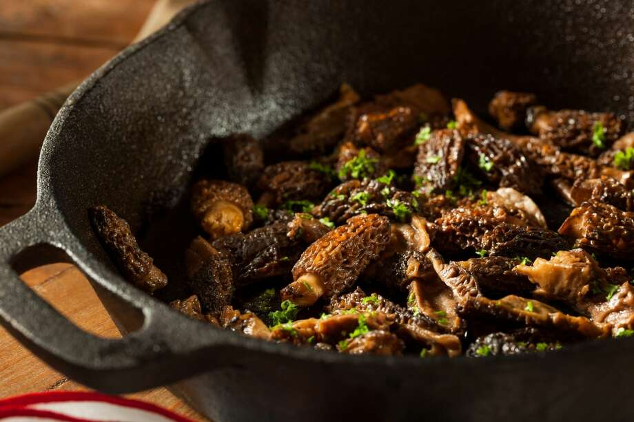 Morel can add a rich and earthy flavor to any dish that calls for mushrooms. Photo: Courtesy Photo/Department Of Natural Resources
