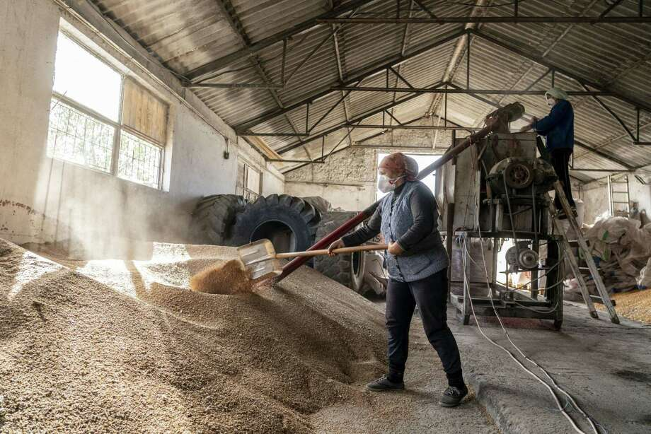 An agricultural worker shovels grain in Agigea, Romania, on Oct. 8, 2019. Photo: Bloomberg Photo By Evgeniy Maloletka. / © 2019 Bloomberg Finance LP