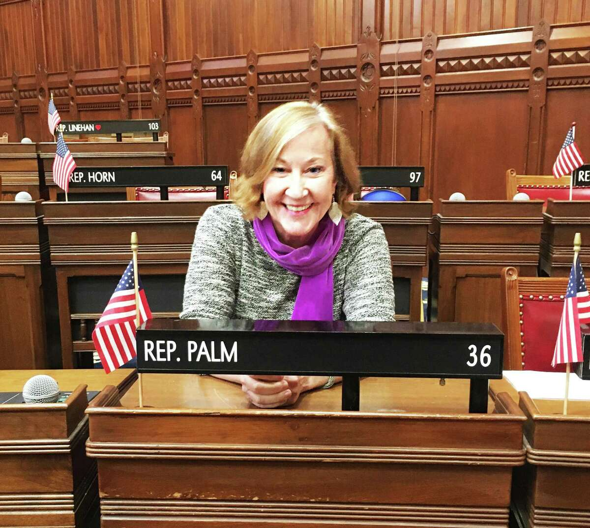 State Rep. Christine Palm, D-Chester