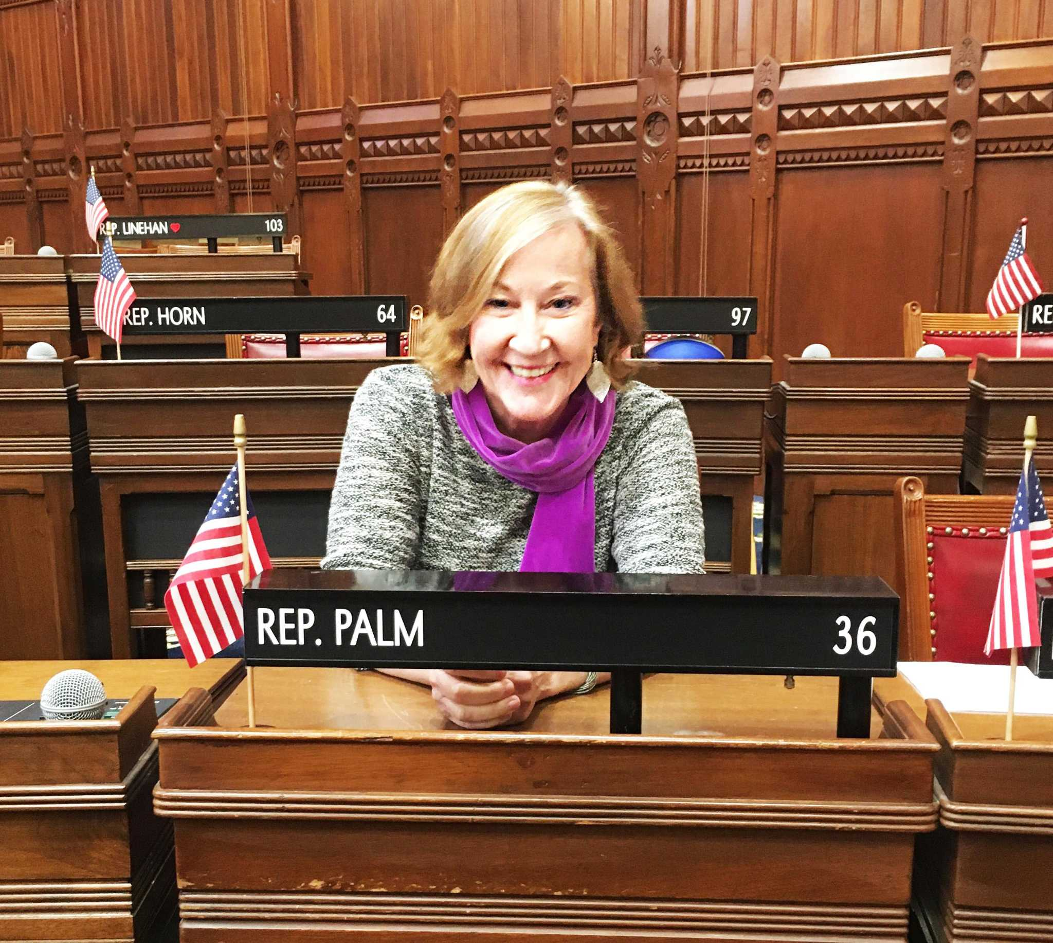 Palm Unanimously Endorsed As Democratic Candidate For 36th