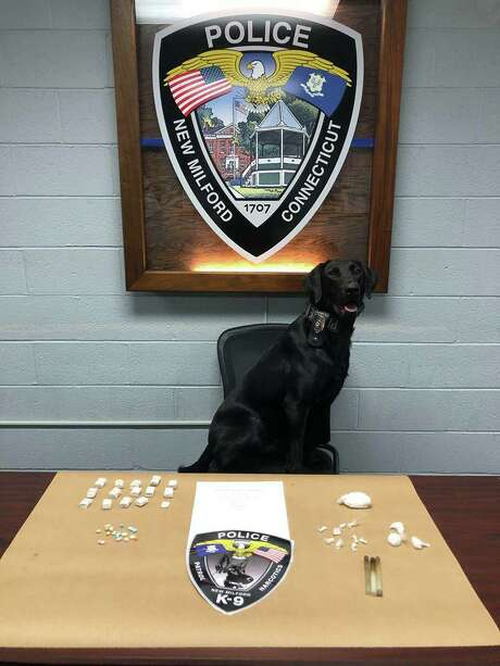 """Police said K9 Mattis """"hit several locations,"""" finding 14 bundles — 140 bags — of heroin, 14 bags of cocaine and several ecstasy pills. Photo: Contributed Photo / New Milford Police Department"""