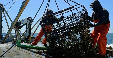 The Texas Parks and Wildlife Commission approved a set of rules for oyster mariculture, effectively launching the industry in the state.