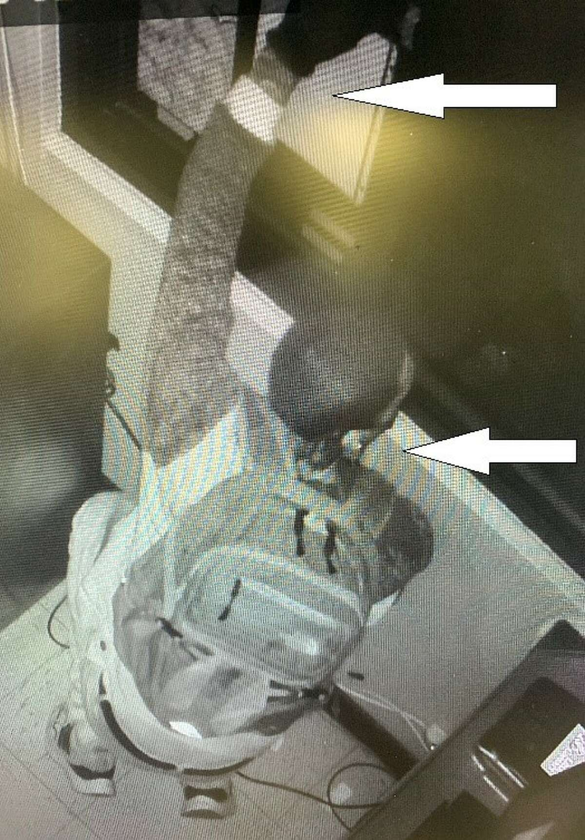 San Antonio police are asking for the public's help in identifying two men who they say broke into a North Side pizza joint.