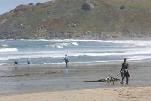 Chris Coughlin (right) of Pacifica walks Pip at Pacifica State Beach during a daily walk on Thursday, April 30, 2020 in Pacifica, Calif.