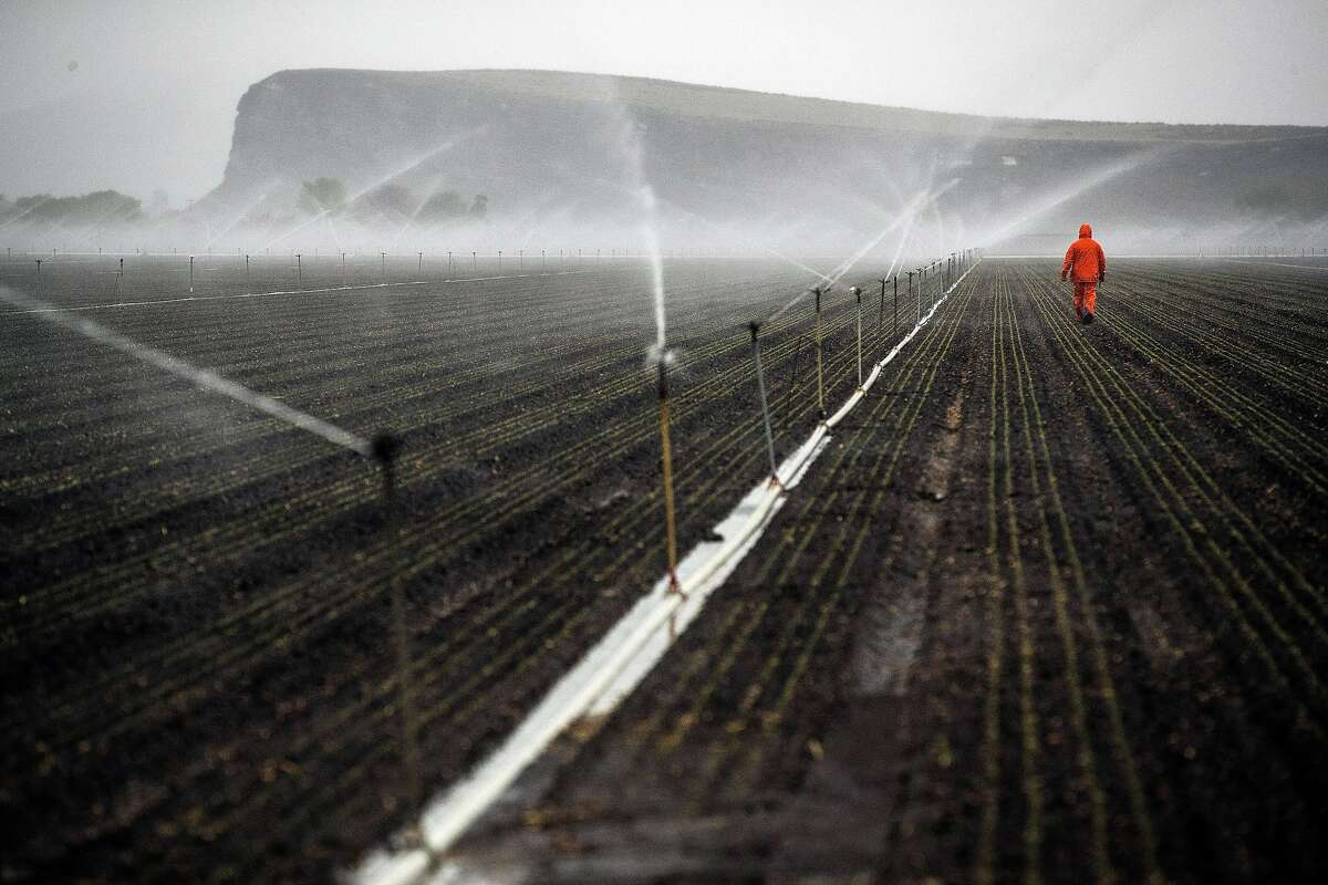 A farmworker working for Scott Seus out at dawn checking sprinkler operation on his farm in the Klamath Basin outside Tulelake, Calif., on Monday, May 18, 2020. Nowhere has California�s dry winter hit harder than the state�s far north, where hundreds of farmers along the Oregon border now risk having their irrigation water shut off and their crops destroyed. The Klamath Project, which ships water from the High Cascades to more than 200,000 acres of onions, potatoes, wheat and barley across two states, is running low. Water districts supplied by the project say there may not be water for farms after next month. The last time the water agencies of the Klamath Basin warned of such a dire situation, farmers marched on the gates of the project in protest and U.S. marshals were called in to keep the peace. Today, the prospect of running out of water comes as the farm-dependent region faces the additional economic blow of the coronavirus pandemic.