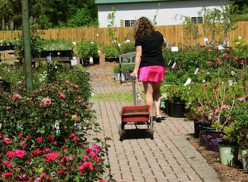A woman is ready to shop as she grabs a wagon at The Gade Farm Friday, May 22, 2020 in Guilderland, N.Y. People were buying plants and flowers to plant over the Memorial Day weekend. (Lori Van Buren/Times Union)