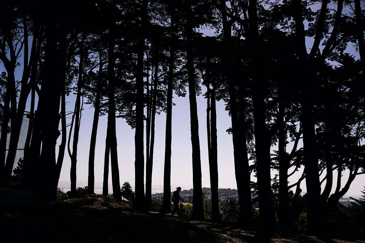 A woman walks with a child between a row of trees at Holly Park, amid the coronavirus disease (COVID-19) outbreak, in San Francisco, Calif. on Thursday, May 21, 2020.