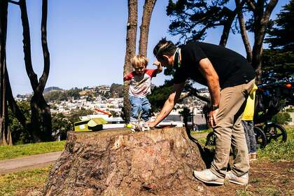 Michael Stein helps son Wyatt launch a rocket at Holly Park in San Francisco.